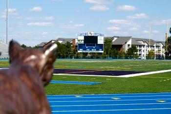 Field Story photo (Sports)