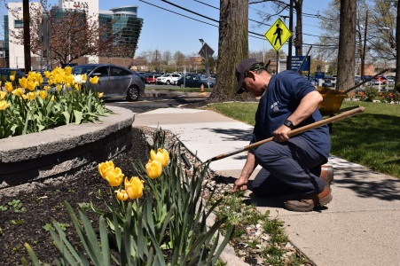 A GCA landscaper working in the garden area in front of Kean Hall. Photo: Y. Smishkewych